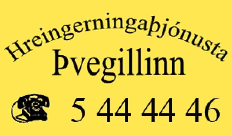 Þvegillinn